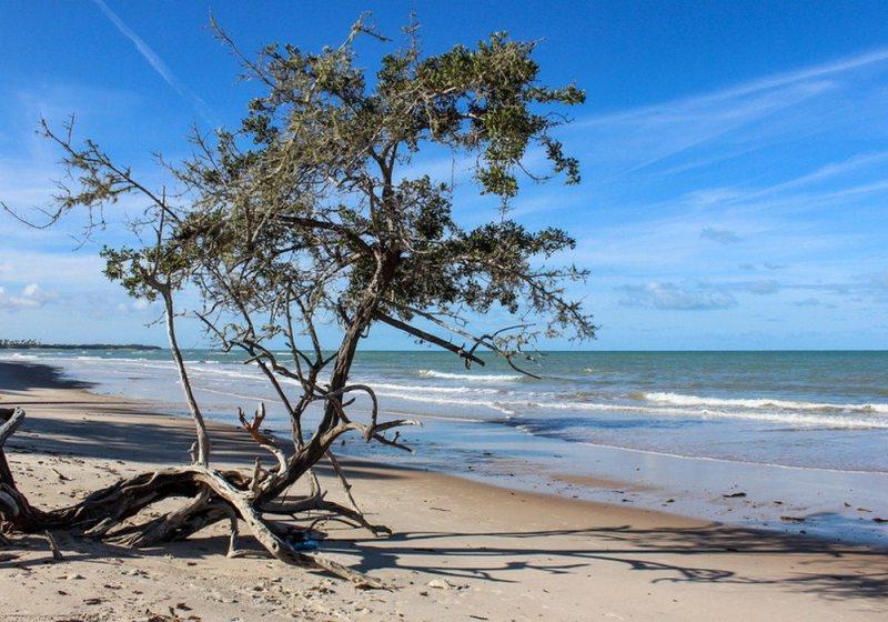 Cumuruxatiba beach in Prado city, Bahia, Brazil