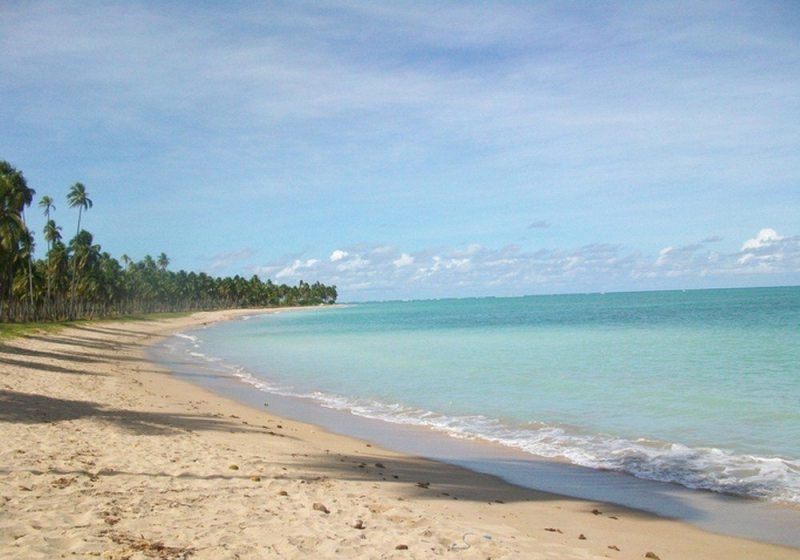 Patacho beach, Alagoas