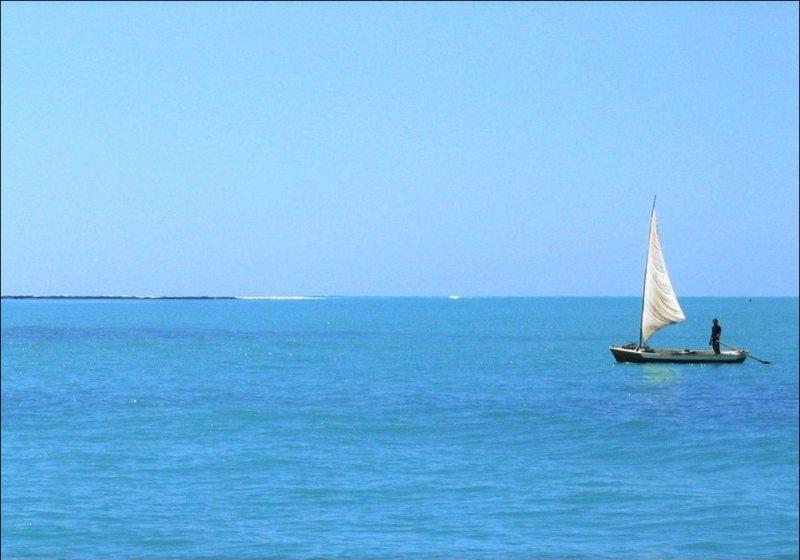 Maragogi Um Paraíso Irresistível
