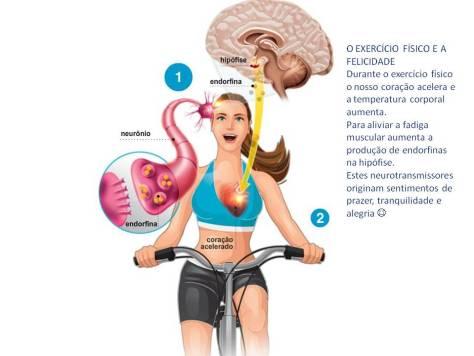 Exercicio e felicidade melhorsaude.org melhor blog de saude