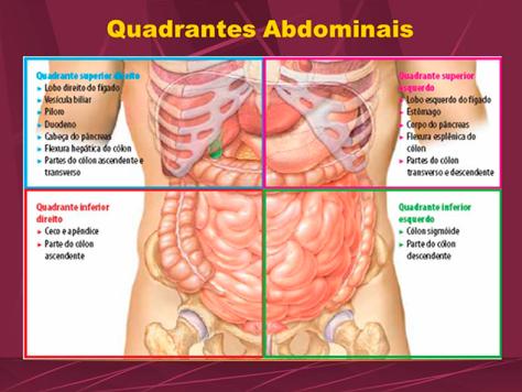 dor abdominal no quadrante inferior esquerdo irradiando para a perna esquerda
