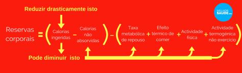 Dieta e metabolismo calorias ingeridas melhorsaude.org melhor blog de saude
