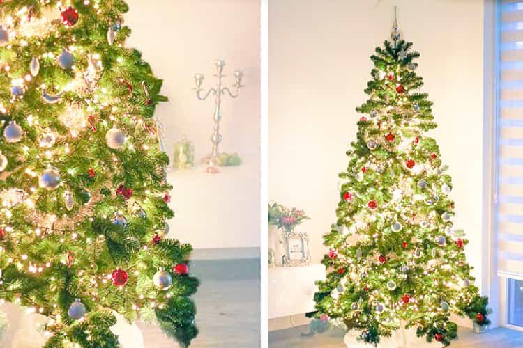 Tips om de kerstboom in huis te halen