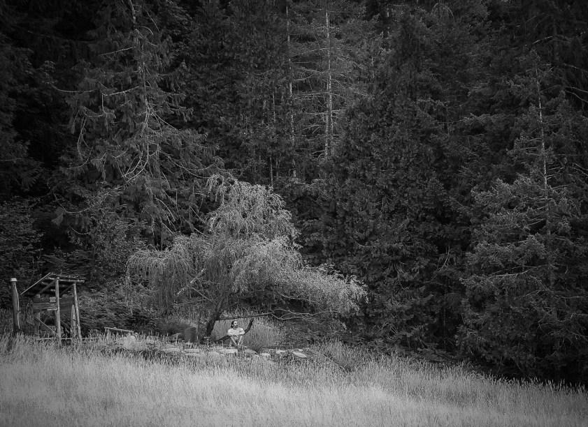 untitled shoot-004-4
