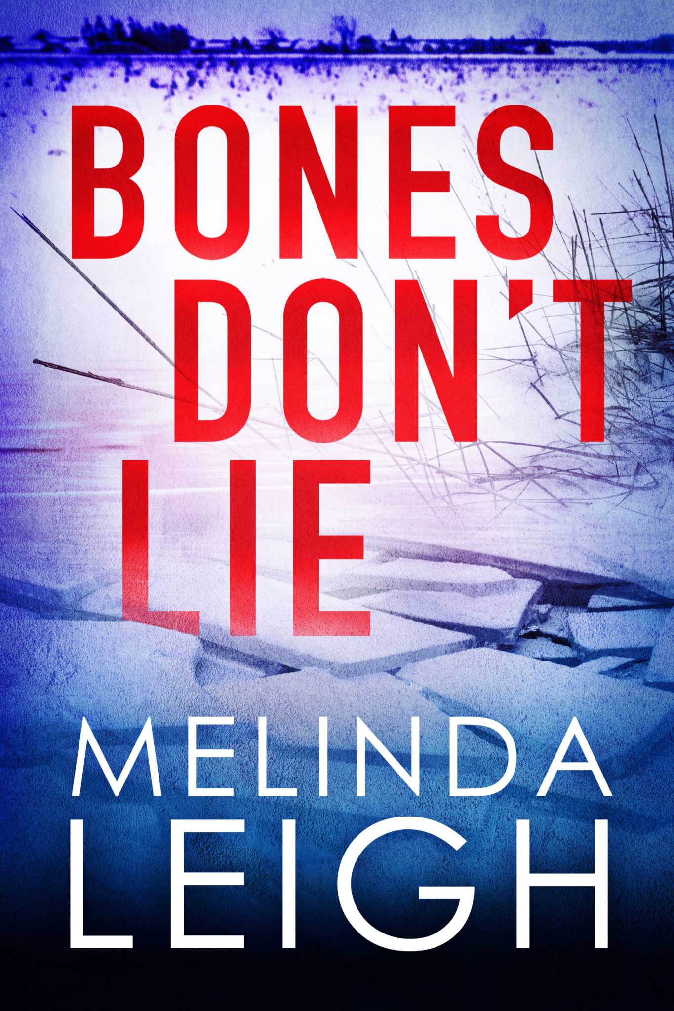 Image result for bones don't lie melinda leigh