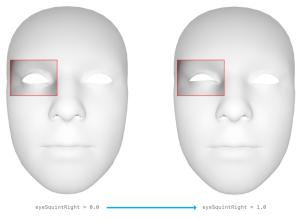 eyeSquint - lid tightener - AU7