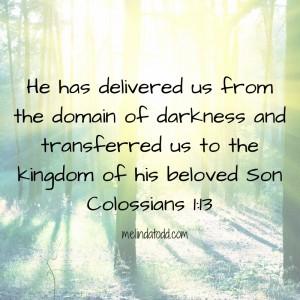 beloved son melindatodd