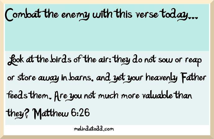 Matthew 6:26