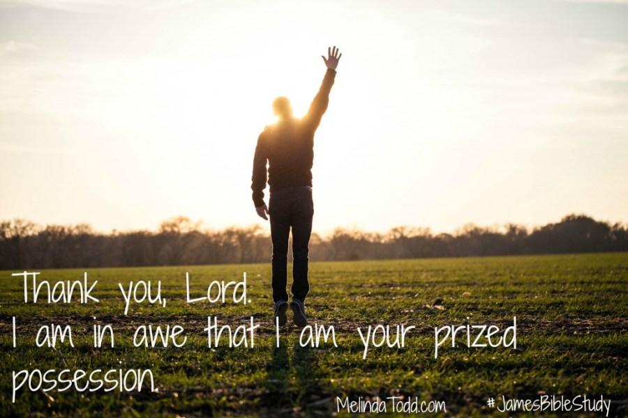 Prized Possession James Bible Study @ MelindaTodd.com