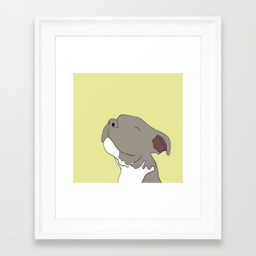 Sunny The Pit Bull Puppy Framed Print by Melinda Todd