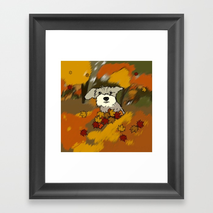 Buck The Schnauzer In Fall Leaves by Melinda Todd Framed Print
