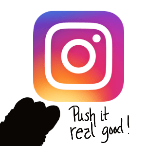 Instagram Follow Button Custom