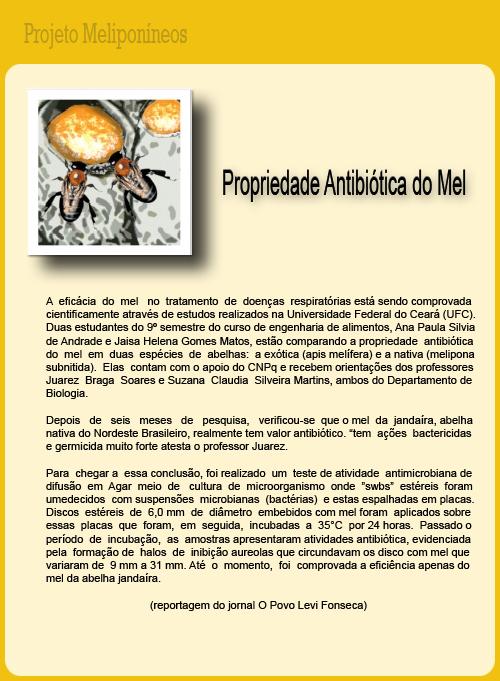 Mel da Abelha Jandaíra