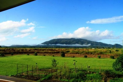 view from the verandah of the beautiful place I was housesitting in Feluga until last week 4.5.2012