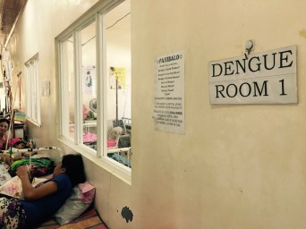 the other dengue ward original