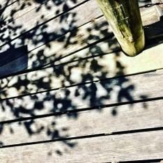 shadows-on-the-deck