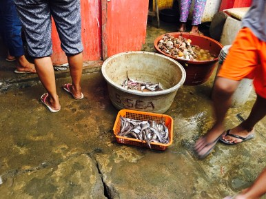 in the fish market