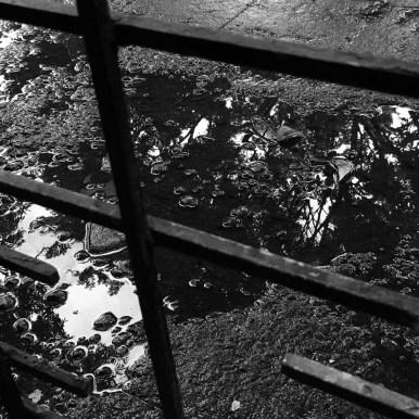 black and white shadows