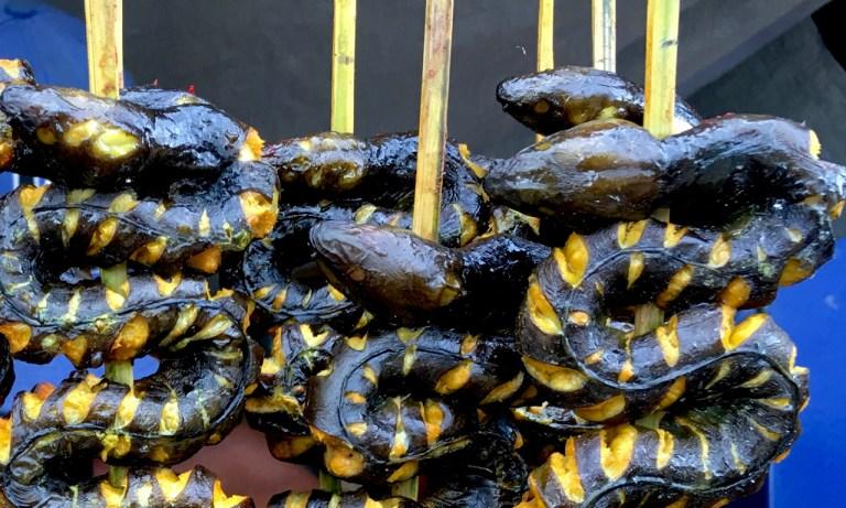 BBQ sea snake sticks