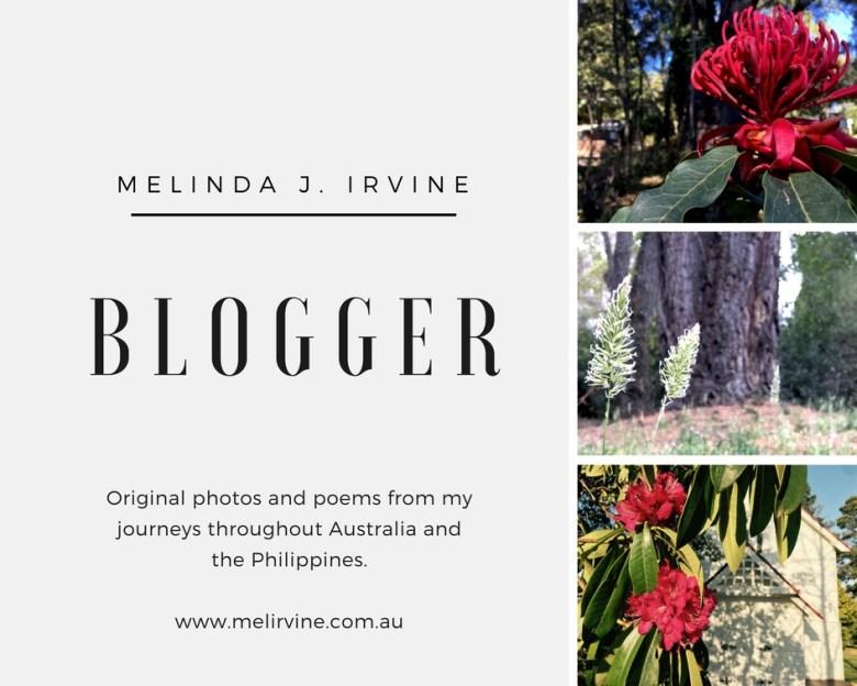 Melinda J. Irvine poet and blogger