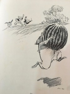 illustration from the magic pudding