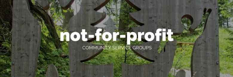 blogging for non-profits and community groupsby Melinda J. Irvine