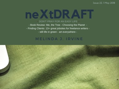 neXtDRAFT an eZine by Melinda J. Irvine Issue 22.