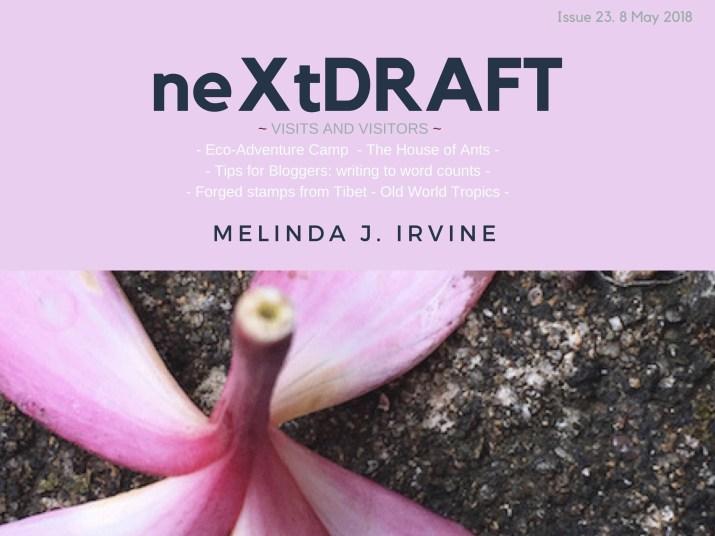 neXtDRAFT an eZine by Melinda J. Irvine Issue 23.