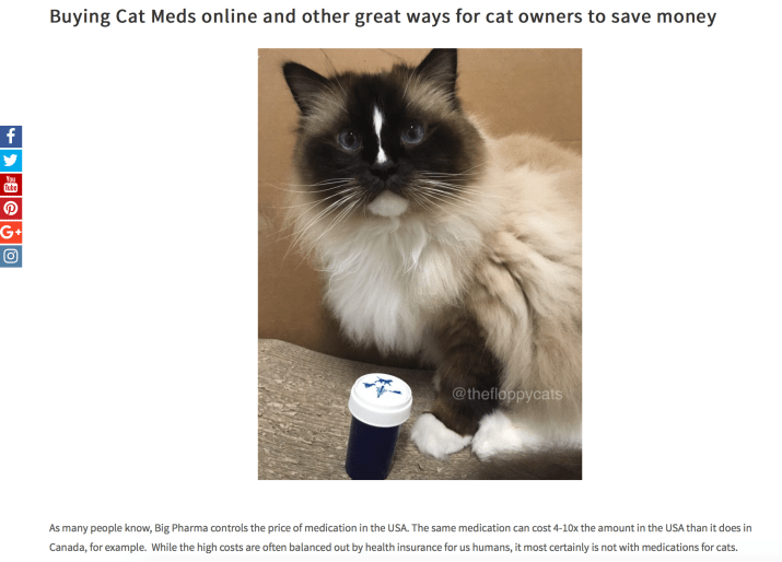 buying cat meds online - blog post on floppy cats