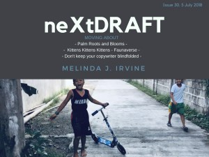 neXtDRAFT an eZine by Melinda J. Irvine Issue 30.
