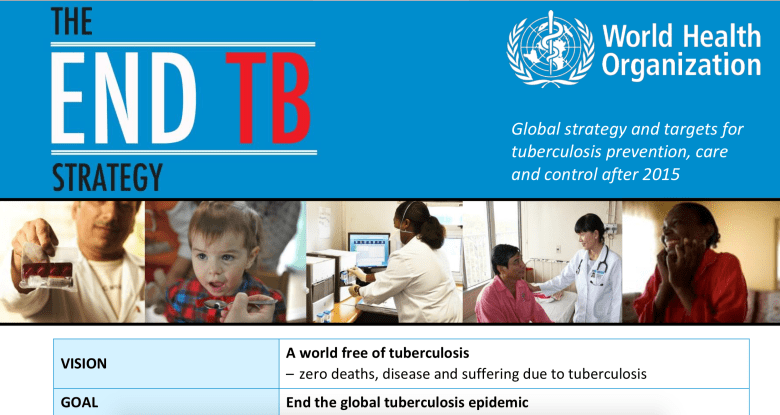 end tuberculosis (TB) strategy