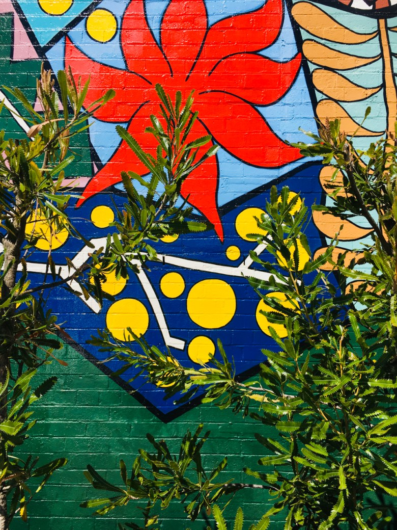 murals in blackheath nsw2