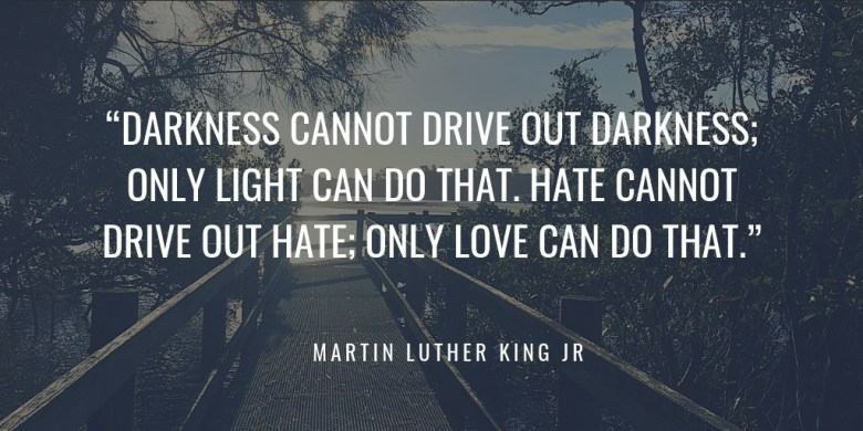 """""""DARKNESS CANNOT DRIVE OUT DARKNESS; ONLY LIGHT CAN DO THAT. HATE CANNOT DRIVE OUT HATE; ONLY LOVE CAN DO THAT."""" MARTIN LUTHER KING JR"""