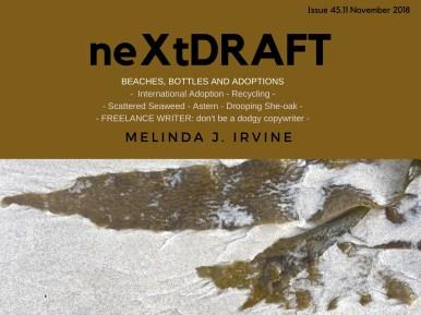 neXtDRAFT an eZine by Melinda J. Irvine Issue 45