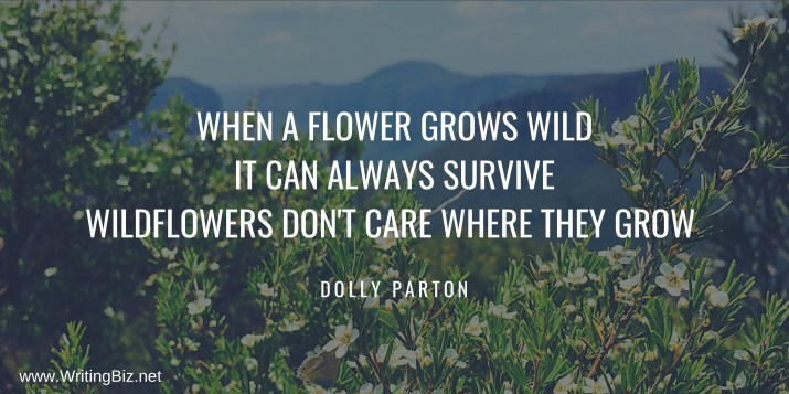 When a flower grows wild, it can always survive Wildflowers don't care where they grow Dolly Parton