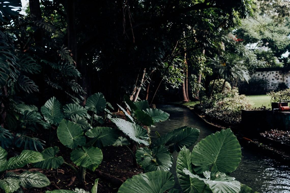 Boda en Hacienda Chiconcuac