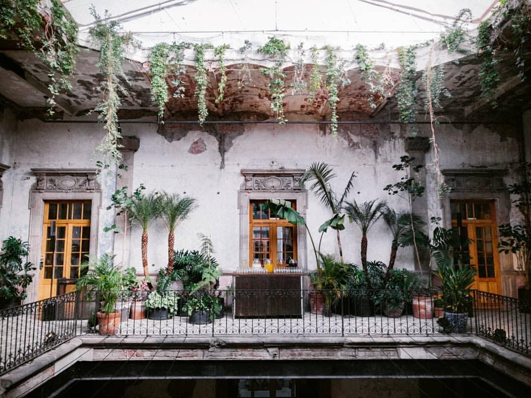 Proyecto Público Prim, el lugar más cool de la CDMX