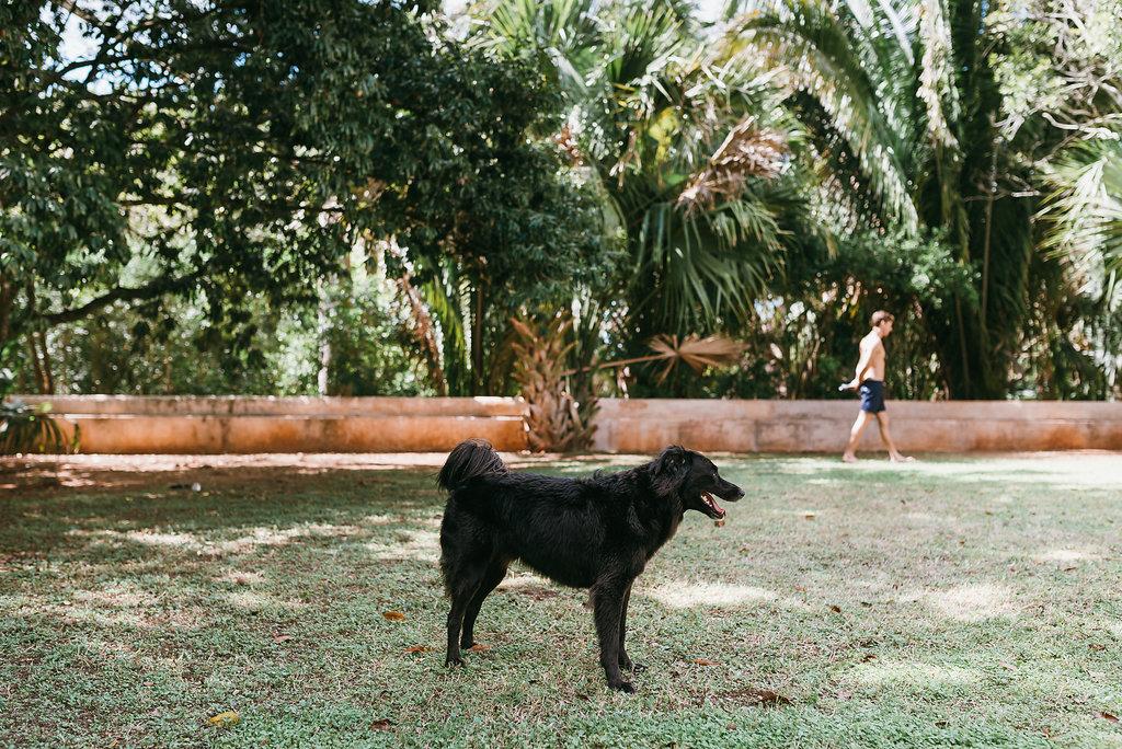Boda en Hacienda Tekik de Regil Yucatán