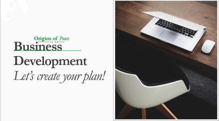 business development laptop and chair