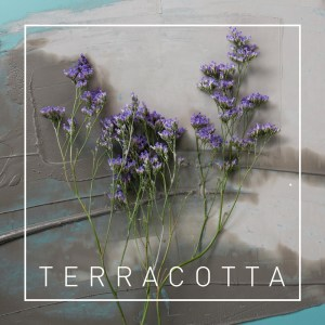 01 Terracotta m4a image -