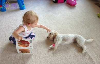 baby reading book to puppy diary of a dog