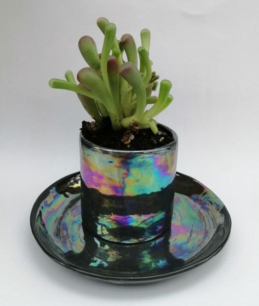 black ceramic plant pot