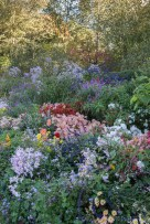 Another view of the Herbaceous Borders