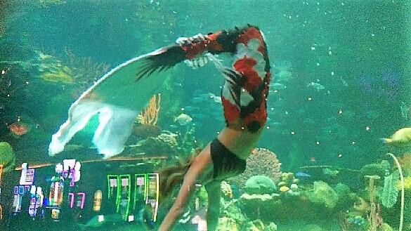 vegas mermaid tail (2)