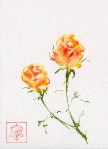 Roses 042718