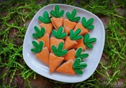 Mini Carrot Cookies