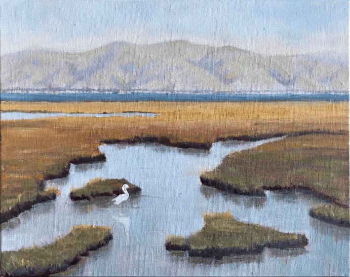 Palo Alto Baylands Marsh Egret