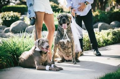 MelissaMontoyaPhotography_EngagementPhotos_GreenAcre_ScrippsBeach_Luis+Bella_4911_WEB