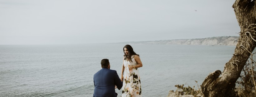WEDDING PROPOSAL photos: La Jolla Cove