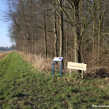 Viajando por 40 cidades da Holanda: 9 ª cidade – Lelystad